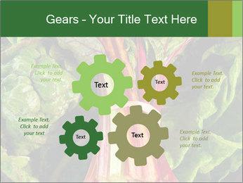 0000078686 PowerPoint Template - Slide 47