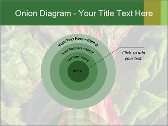 0000078686 PowerPoint Template - Slide 61