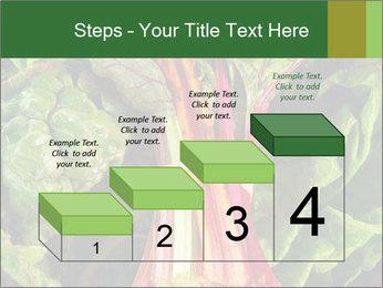 0000078686 PowerPoint Template - Slide 64