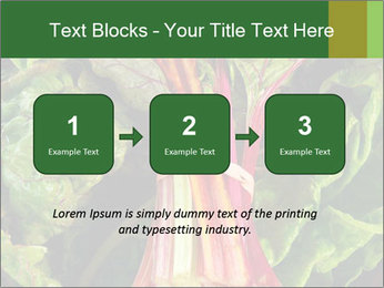 0000078686 PowerPoint Template - Slide 71