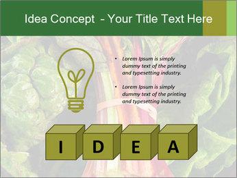 0000078686 PowerPoint Template - Slide 80