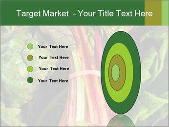 0000078686 PowerPoint Template - Slide 84