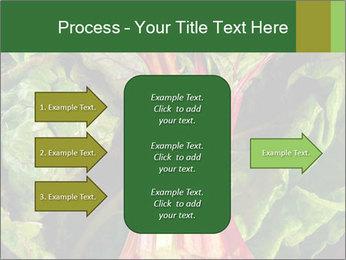 0000078686 PowerPoint Template - Slide 85