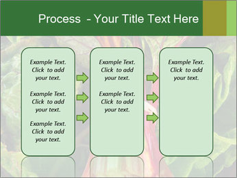 0000078686 PowerPoint Template - Slide 86