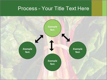 0000078686 PowerPoint Template - Slide 91