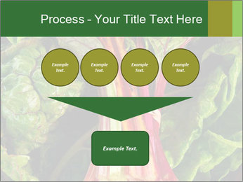 0000078686 PowerPoint Template - Slide 93