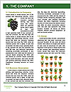 0000078686 Word Templates - Page 3