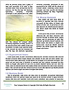 0000078687 Word Templates - Page 4