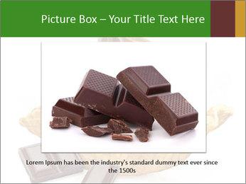 0000078691 PowerPoint Templates - Slide 15