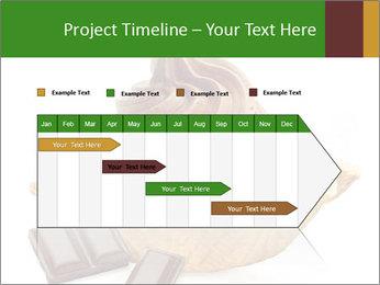 0000078691 PowerPoint Templates - Slide 25