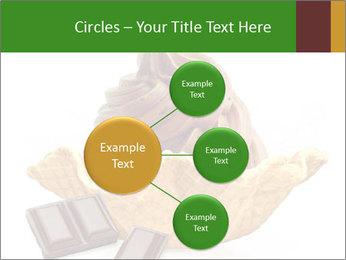 0000078691 PowerPoint Templates - Slide 79