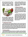 0000078691 Word Templates - Page 4
