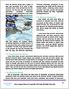 0000078702 Word Template - Page 4