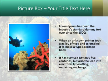 0000078706 PowerPoint Template - Slide 13