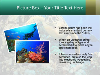 0000078706 PowerPoint Template - Slide 20