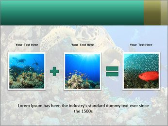 0000078706 PowerPoint Template - Slide 22
