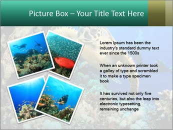 0000078706 PowerPoint Template - Slide 23
