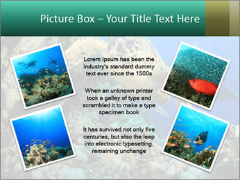 0000078706 PowerPoint Template - Slide 24