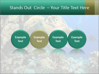 0000078706 PowerPoint Template - Slide 76