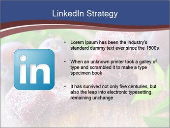 0000078712 PowerPoint Templates - Slide 12