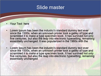 0000078712 PowerPoint Templates - Slide 2