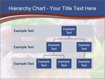 0000078712 PowerPoint Templates - Slide 67