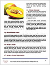 0000078712 Word Template - Page 4