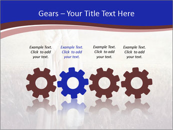 0000078715 PowerPoint Template - Slide 48