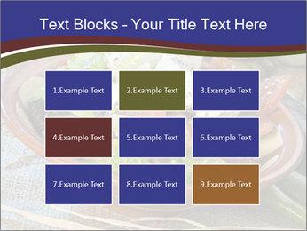 0000078721 PowerPoint Templates - Slide 68