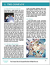 0000078722 Word Template - Page 3