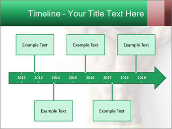 0000078726 PowerPoint Template - Slide 28