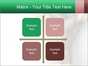 0000078726 PowerPoint Templates - Slide 37