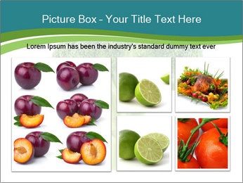 0000078731 PowerPoint Templates - Slide 19