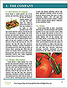 0000078731 Word Templates - Page 3