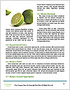 0000078731 Word Templates - Page 4