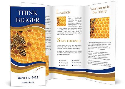 0000078735 Brochure Templates