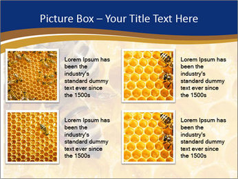 0000078735 PowerPoint Templates - Slide 14