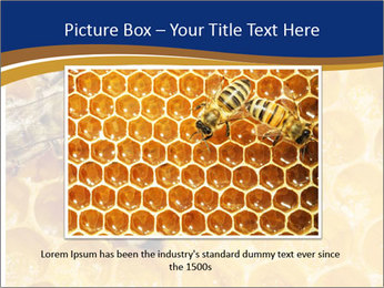 0000078735 PowerPoint Templates - Slide 15