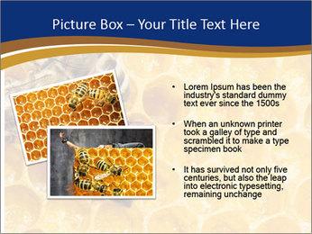 0000078735 PowerPoint Template - Slide 20