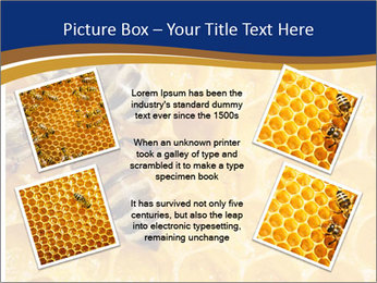 0000078735 PowerPoint Templates - Slide 24