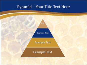 0000078735 PowerPoint Templates - Slide 30