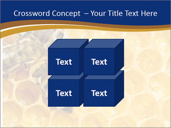 0000078735 PowerPoint Templates - Slide 39