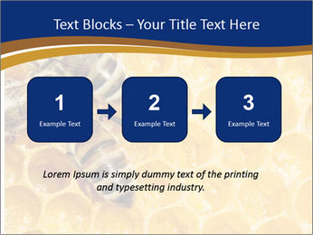0000078735 PowerPoint Templates - Slide 71