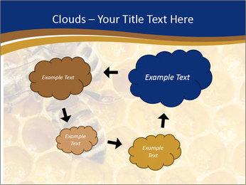 0000078735 PowerPoint Template - Slide 72