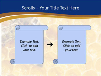 0000078735 PowerPoint Templates - Slide 74