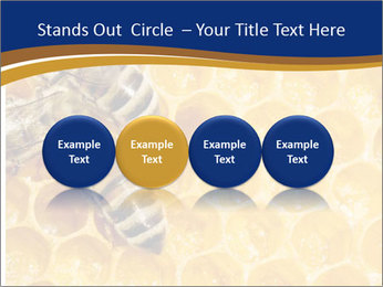 0000078735 PowerPoint Templates - Slide 76