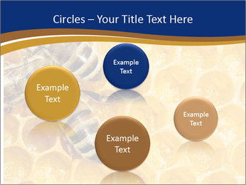 0000078735 PowerPoint Templates - Slide 77
