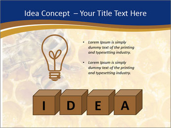 0000078735 PowerPoint Templates - Slide 80