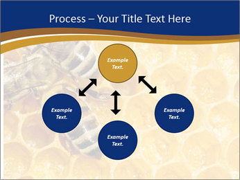 0000078735 PowerPoint Templates - Slide 91