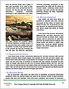 0000078740 Word Template - Page 4